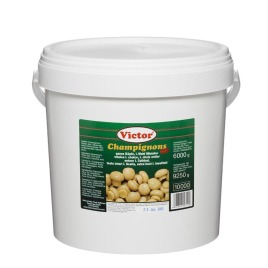 Mushrooms in buckets – whole mini conserved